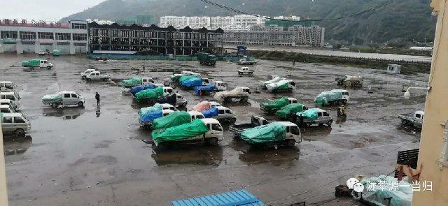 2020年9月21日岷县中药材市场快讯(降雨影响,休市一天)