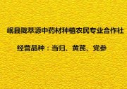 岷县陇萃源中药材种植农民专业合作社