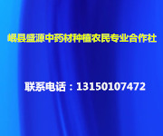岷县盛源中药材种植农民专业合作社
