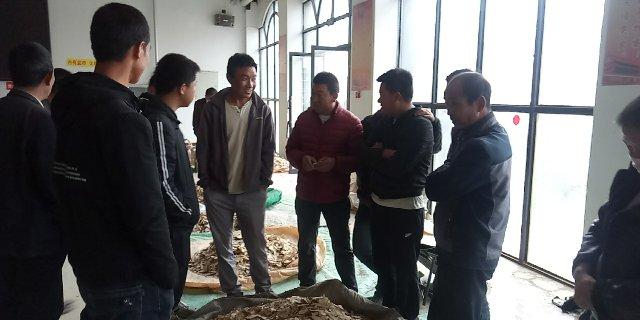 2020年5月27日岷县中药材市场快讯(受近期天气影响,今日