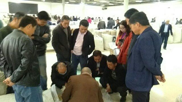 2020年6月1日岷县中药材市场快讯(受降雨影响,交易提前结束)
