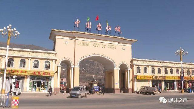 岷县:60万亩中药材筑牢产业发展基石